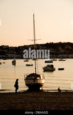 Lady, die ihr Hund am Rand Wassers beim Sonnenuntergang an einem Strand von Devon, England Juli 2013 - Stockfoto