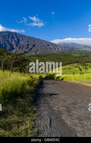 Blick auf den Vulkan Haleakala vom Piilani Highway (Rückstraße nach Hana) auf der Insel Maui in Hawaii. - Stockfoto