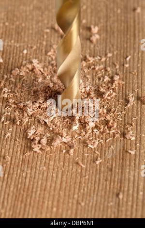 Bohrer Holz - Stockfoto