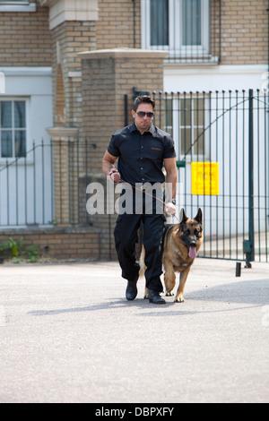 Bulliger Wachmann auf Patrouille mit deutscher Schäferhund Wachhund vor Sicherheitsschleusen - Stockfoto