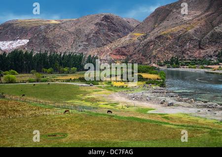 Heiliges Tal des Urubamba-Flusses, Felder und Landwirtschaft. - Stockfoto