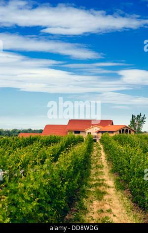 USA, Washington, Walla Walla. Pfeffer-Brücke Weingut ist einer der Walla Walla Premium-Winzer. - Stockfoto