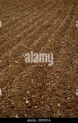 Die Furchen auf dem Gebiet der Ackerflächen für das Frühjahr Pflanzen bereit. - Stockfoto