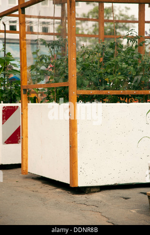 urban gardening frankfurt am main hessen deutschland europa stockfoto bild 60100870 alamy. Black Bedroom Furniture Sets. Home Design Ideas