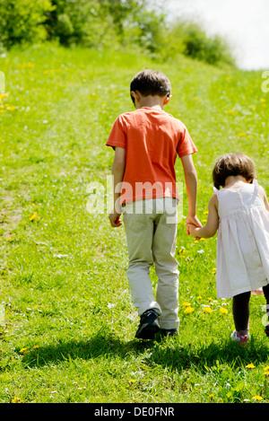 Bruder und Schwester gehen Hand in Hand durch Feld - Stockfoto