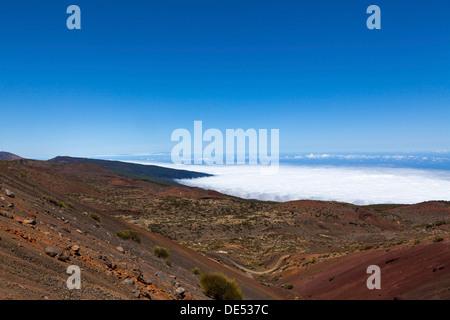 Parque Nacional de Las Cañadas del Teide, Teide-Nationalpark, UNESCO Weltnaturerbe, mit Blick auf die - Stockfoto