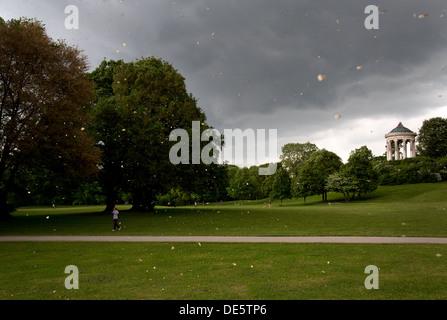München, versammeln sich Gewitterwolken im englischen Garten - Stockfoto