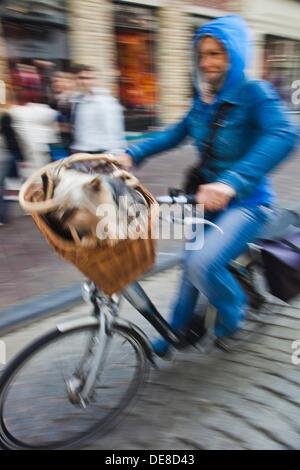 Menschen im Zyklus Brügge, Brügge, Flandern, Belgien, UNESCO-Weltkulturerbe. - Stockfoto