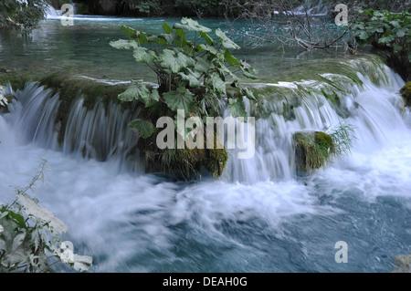 Natürliche Wasserfälle und Kaskaden, fotografiert im Nationalpark Plitvicer Seen, Kroatien - Stockfoto