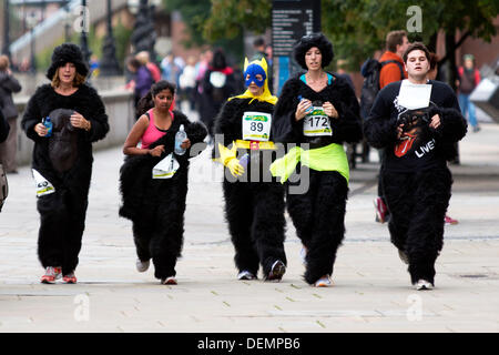 London, UK. 21. September 2013. Die großen Gorilla eine Charity run zugunsten der Gorilla Organization, London, - Stockfoto