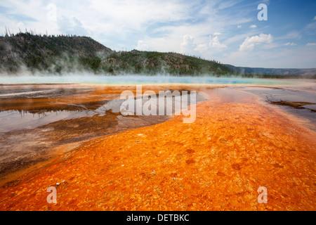 Bunte Bakterien mat umliegenden Grand Bildobjekte Frühling, Midway Geyser Basin, Yellowstone-Nationalpark, Wyoming - Stockfoto