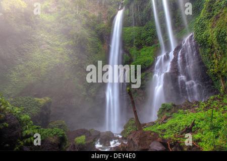Indonesien, Bali, Mittelgebirge, Sekumpul Wasserfall - Stockfoto