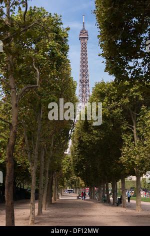 Eiffel Tour gesehen durch eine klassische französische Linie von Bäumen, Champs de Mars, Paris, Frankreich - Stockfoto