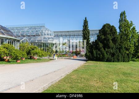 gew chshaus im berliner botanischen garten in dahlem berlin deutschland stockfoto bild. Black Bedroom Furniture Sets. Home Design Ideas
