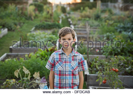 Junge stand im Gemeinschaftsgarten - Stockfoto