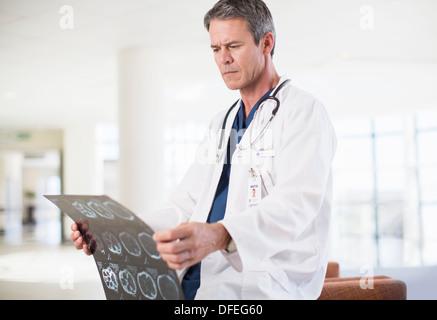 Arzt anzeigen Kopf Röntgen im Krankenhaus - Stockfoto