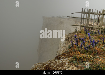 Eingehende Meer Nebel bei Belle Tout in der Nähe von Beachy Head, East Sussex, UK. Garten ist ins Meer gefallen. - Stockfoto