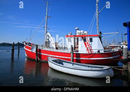 fisch maasholm