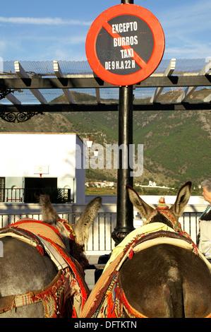 Esel-Taxi-Haltestelle in der Ortschaft Mijas Mijas Malaga Spanien - Stockfoto
