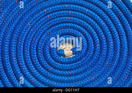 Blaues Seil Schleife, Charleston Marina, Charleston, OR, USA - Stockfoto