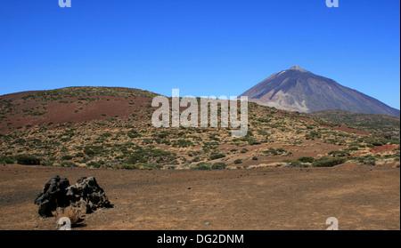 Caneries Teneriffa - UNESCO-Welterbe - Pico de teide - Stockfoto