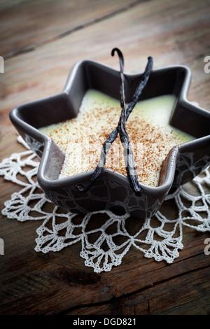 Nahaufnahme von Vanillepudding mit Kakaopulver - Stockfoto