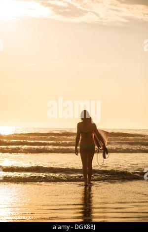 Junge Frau mit Surfbrett bei Sonnenuntergang, La Jolla, San Diego, Kalifornien, USA - Stockfoto