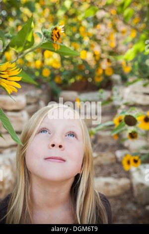 Ein Kind, ein junges Mädchen nach oben auf eine Sonnenblume in einem Blumengarten. - Stockfoto