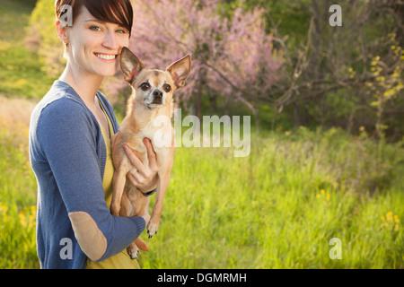 Eine junge Frau auf einer Wiese im Frühjahr. Einen kleinen Chihuahua Hund hält in ihren Armen. Ein Haustier. - Stockfoto