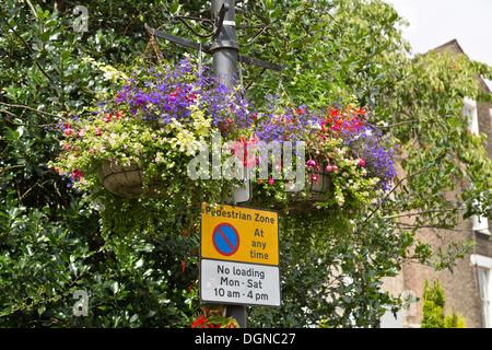 Keine Wartezeiten-Schild am Laternenpfahl mit dekorativen Blumen, Cambridge, England - Stockfoto
