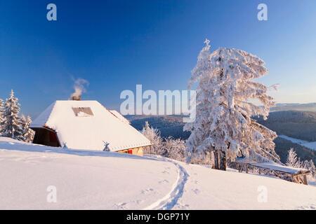 Verschneite Hütte auf dem Belchen Gipfel mit Blick auf den Feldberg, Schwarzwald, Baden-Württemberg - Stockfoto
