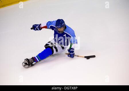 Turin, Italien. 25. Oktober 2013. IPC Sledge Hockey, Italien und Schweden waren alle qualifizierten bis Sotschi - Stockfoto