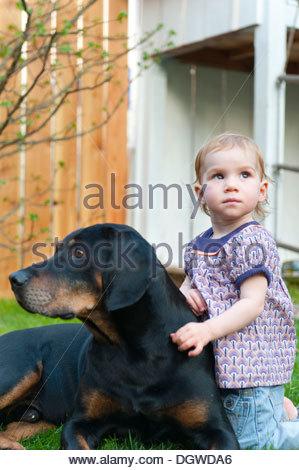 Kleinkind, Mädchen liebevoll streicheln einen großen Hund in einem Garten, Friedberg in der Nähe von Augsburg, Bayern - Stockfoto