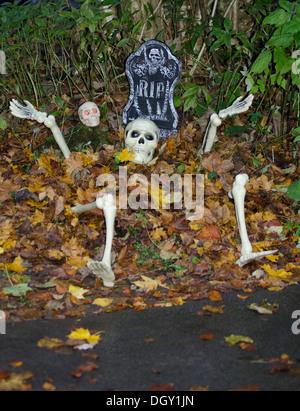 Halloween Skelett in grünen Grab - Stockfoto