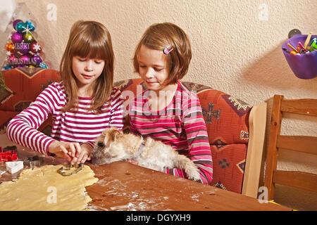 Zwillingsmädchen, mit einem Hund, Ausschneiden von cookies - Stockfoto