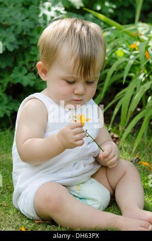 Neun Monate altes Baby Mädchen halten und schnüffeln ein Crocosmia oder Montbretia im Garten. VEREINIGTES KÖNIGREICH. - Stockfoto