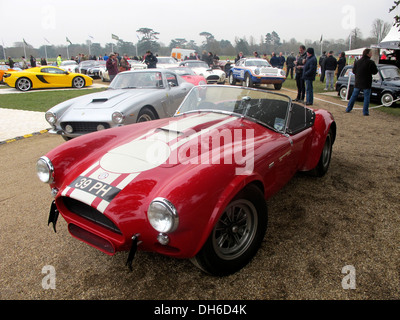 Willment AC Cobra, 39 PH, bei dem Goodwood Festival of Speed Pressetag, England 2013. - Stockfoto