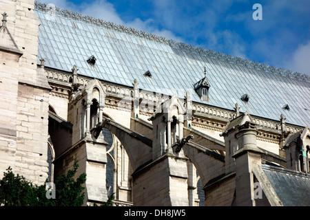 Nahaufnahme von Dach und Wasserspeier von Notre Dame Paris - Stockfoto