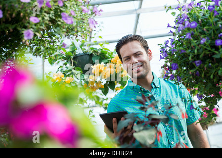 Ein Gewächshaus in einer Gärtnerei Bio Blumen zu wachsen. Der Mensch arbeitet, mit einem digital-Tablette. - Stockfoto