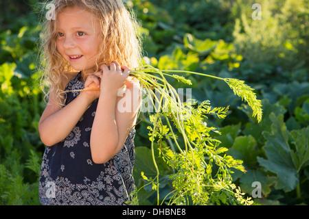 Ein junges Mädchen mit langen roten Locken draußen in einem Garten halten frisch gepflückt Karotten. - Stockfoto