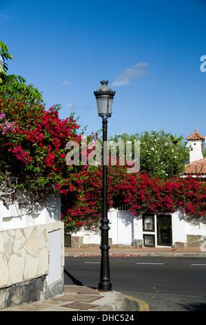 Straße Szene und Bougainvillea, Puerto De Santiago, Teneriffa, Kanarische Inseln, Spanien. - Stockfoto