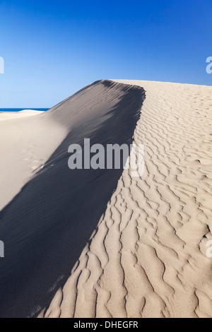 Sanddünen, Maspalomas, Gran Canaria, Kanarische Inseln, Spanien, Atlantik, Europa - Stockfoto