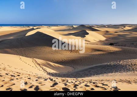 Dünen von Maspalomas, Maspalomas, Gran Canaria, Kanarische Inseln, Spanien, Atlantik, Europa - Stockfoto