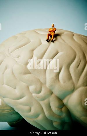 Gehirn-Konzept - Stockfoto