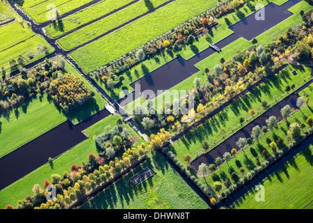 Niederlande, Loenen. Garten und Baum-Kindergarten. Luft. Herbst - Stockfoto