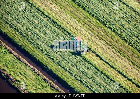 Niederlande, Loenen. Landwirt mit Traktor Rasen zu sammeln. Luftbild - Stockfoto