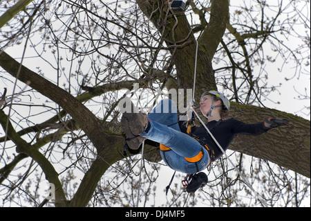 junge Frau beim Geocaching in einem Baum - Stockfoto
