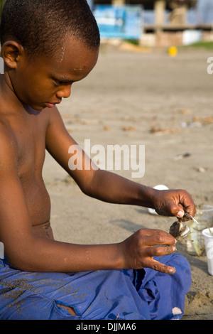 Ein Junge spielt mit einer Krabbe, Cartagena, Kolumbien - Stockfoto