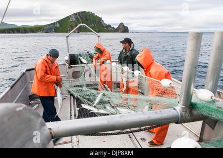 """Lachs an Cape Pankoff auf Unimak Island In The Alaska Abteilung der Fische und Angelspiel """"Alaska-Halbinsel Area"""" - Stockfoto"""
