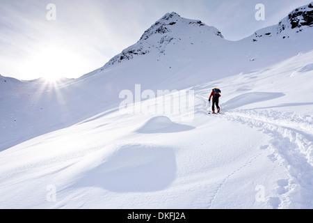 Ski Tourer auf den Aufstieg zum Mt Ellesspitze im Pflerschtal Tal, Wipptal, Südtirol, Trentino-Alto Adige, Italien - Stockfoto